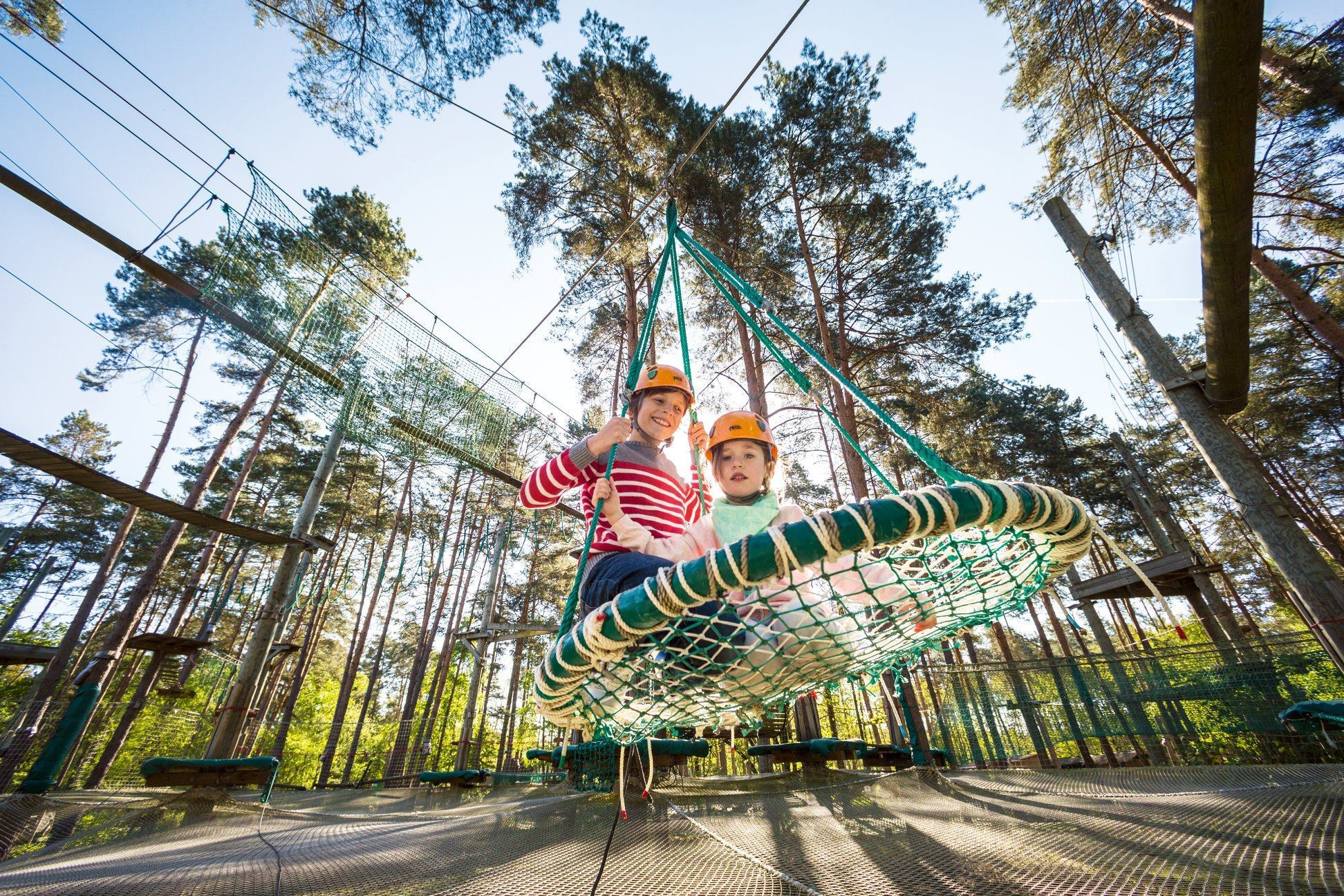 Kids' ropes course and swing