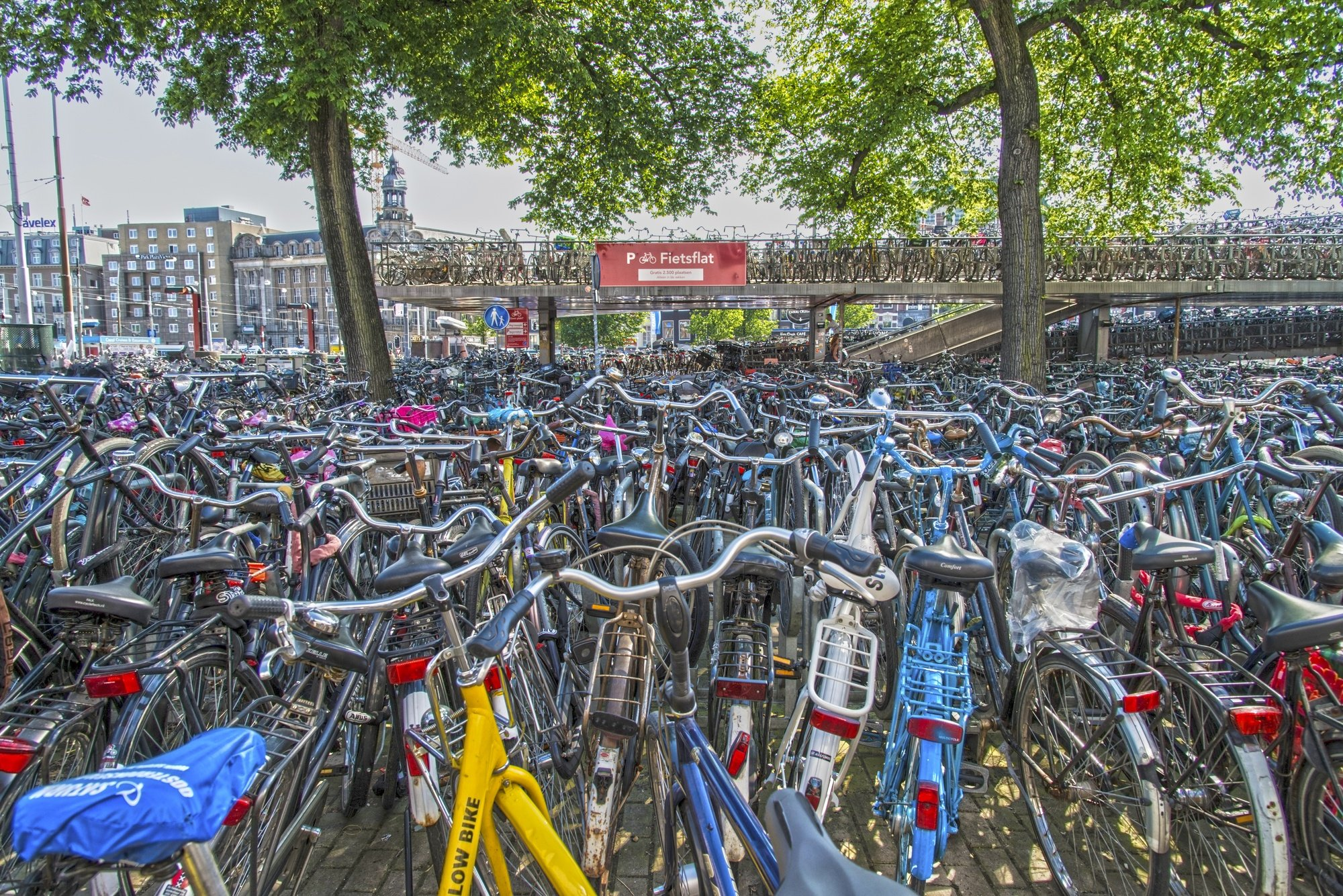 Dutch love of bicycles