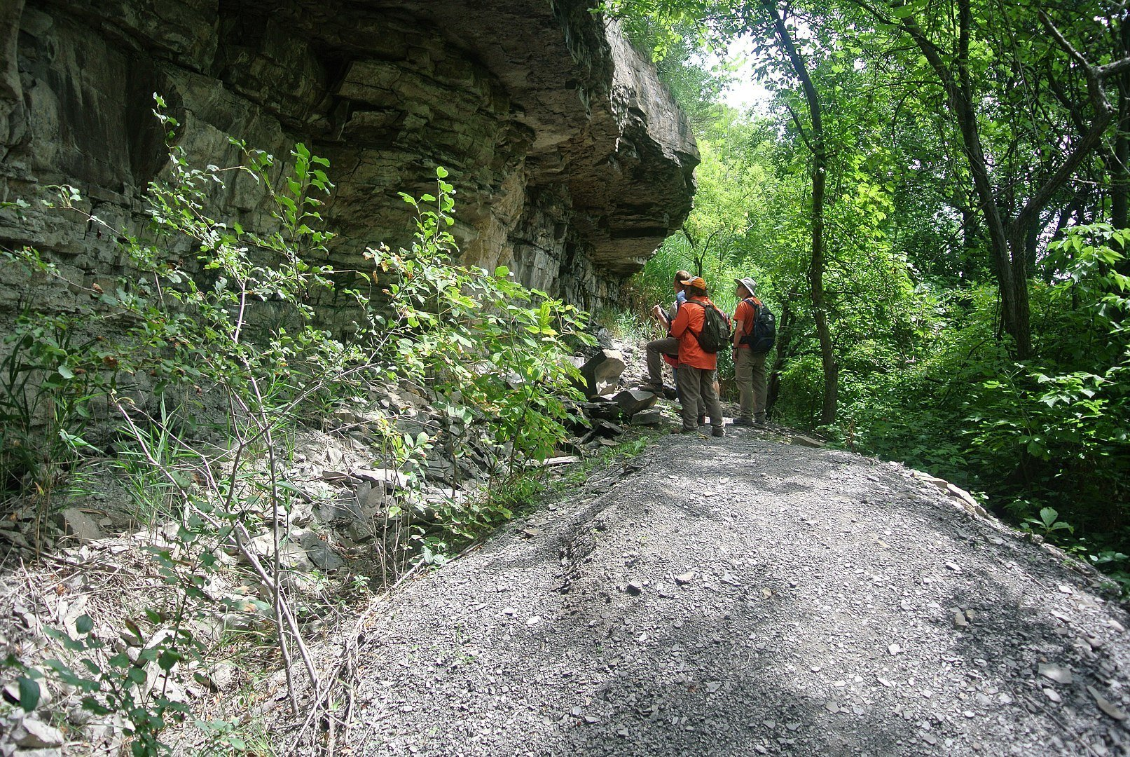 Niagara Gorge Trail in New York