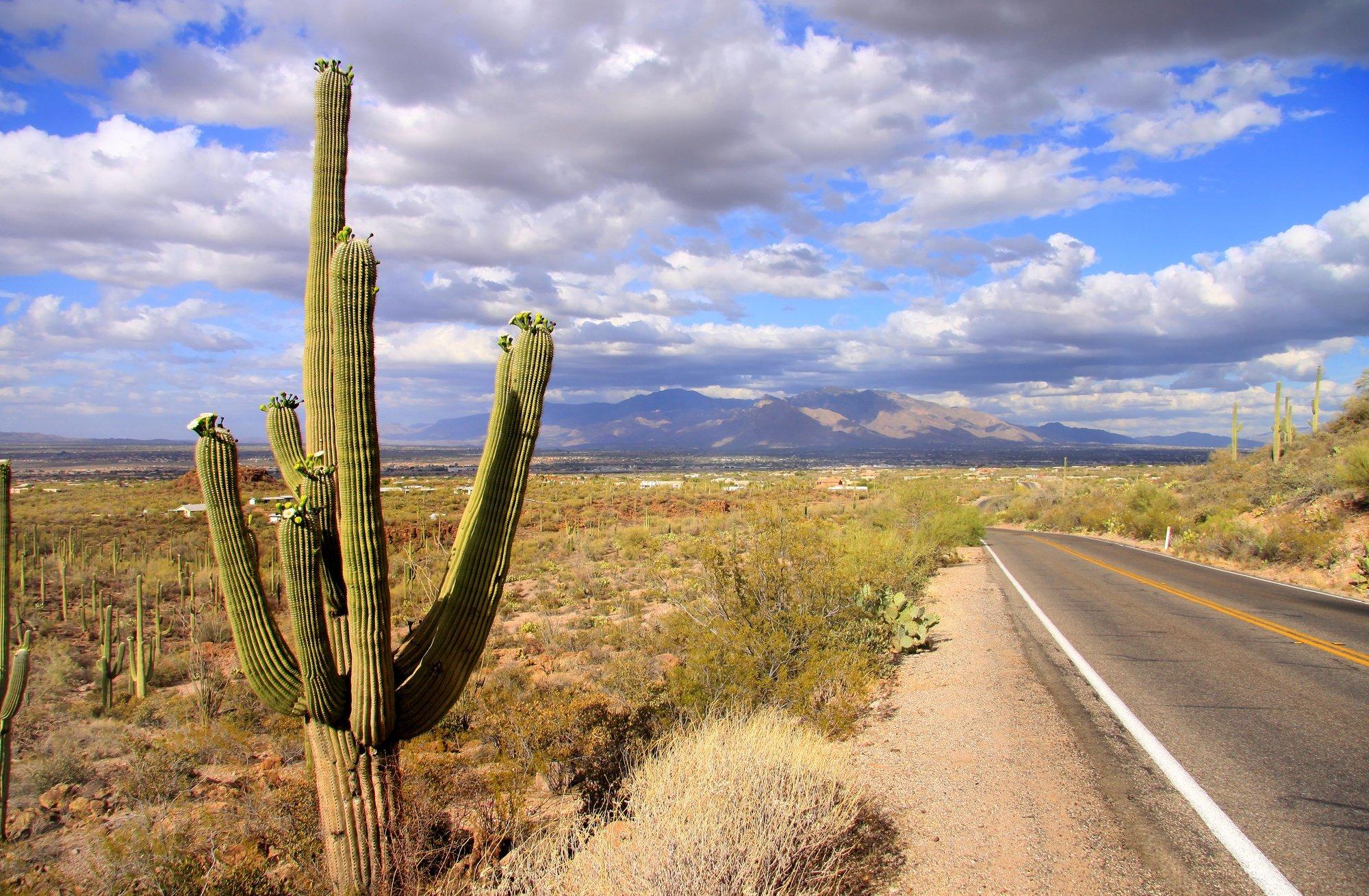 Best Road Trip from Phoenix, Arizona