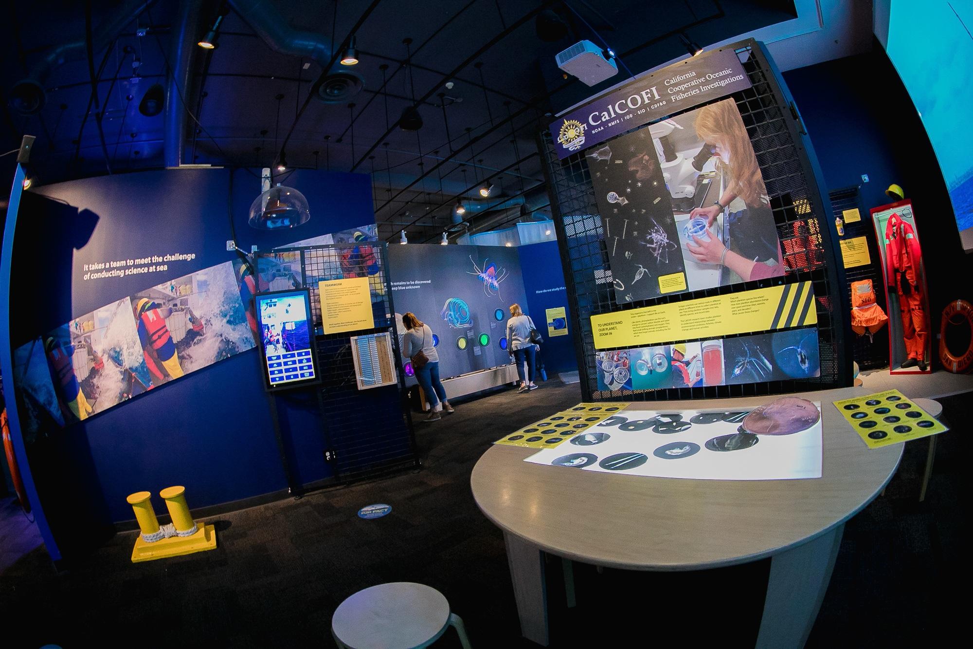 Educational exhibit at Birch Aquarium
