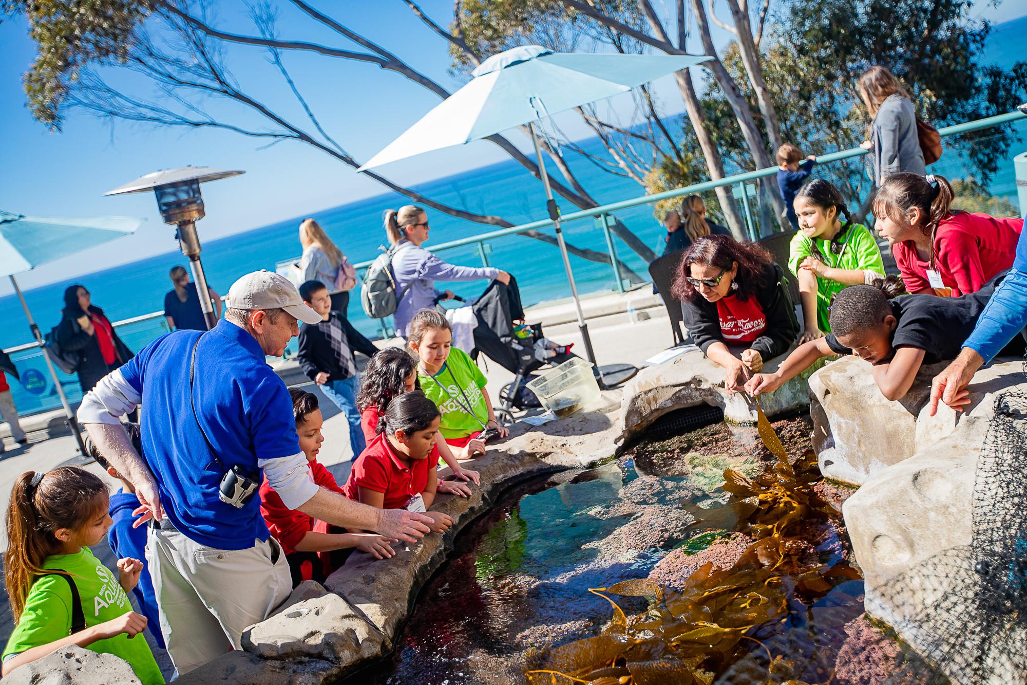 Tide Pool Plaza at San Diego Birch Aquarium