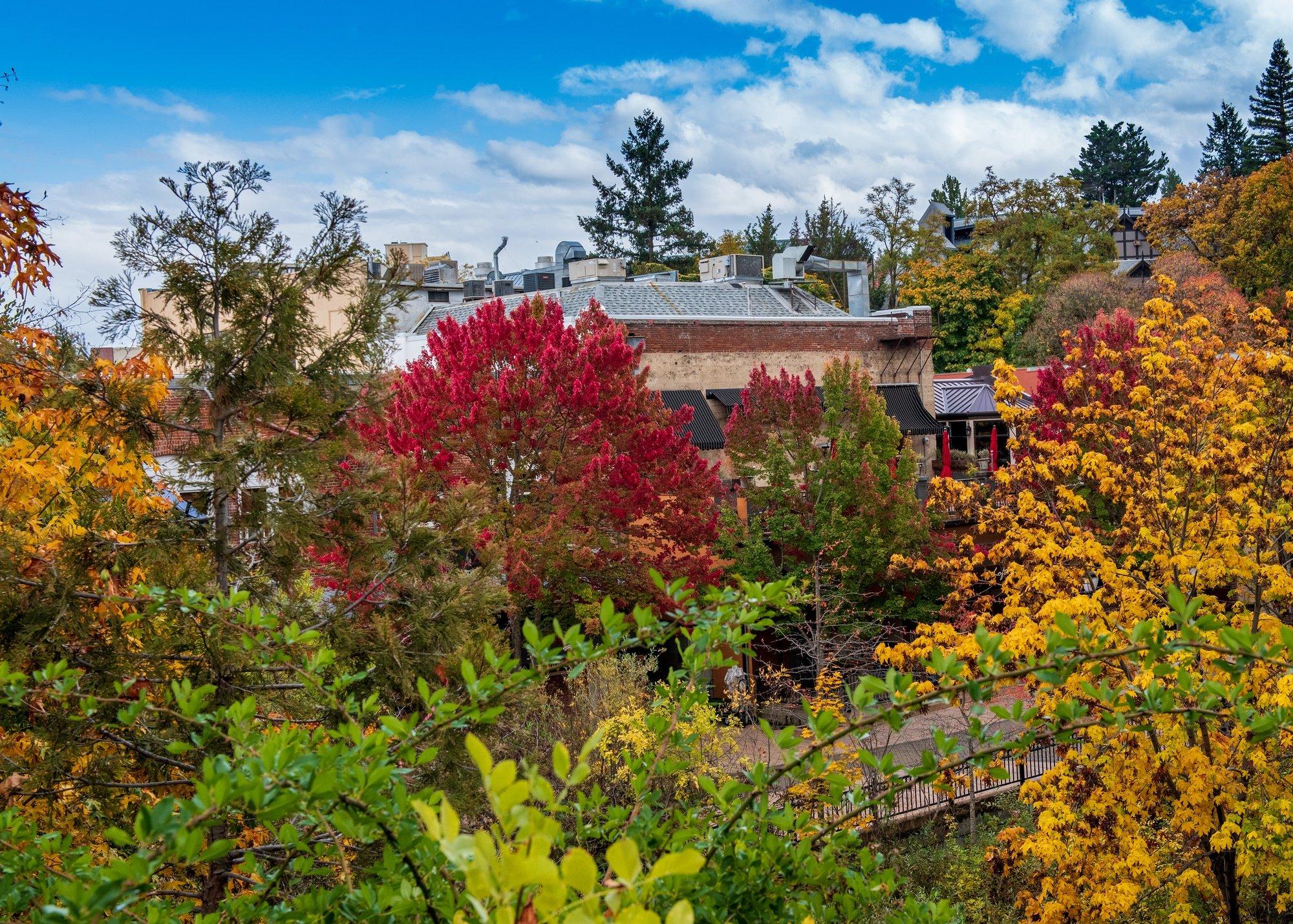 Lithia Park in Ashland, Oregon