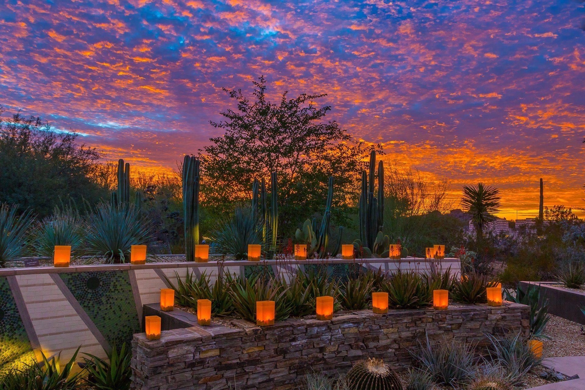 Las Noches de la Luminarias at the Desert Botanical Garden