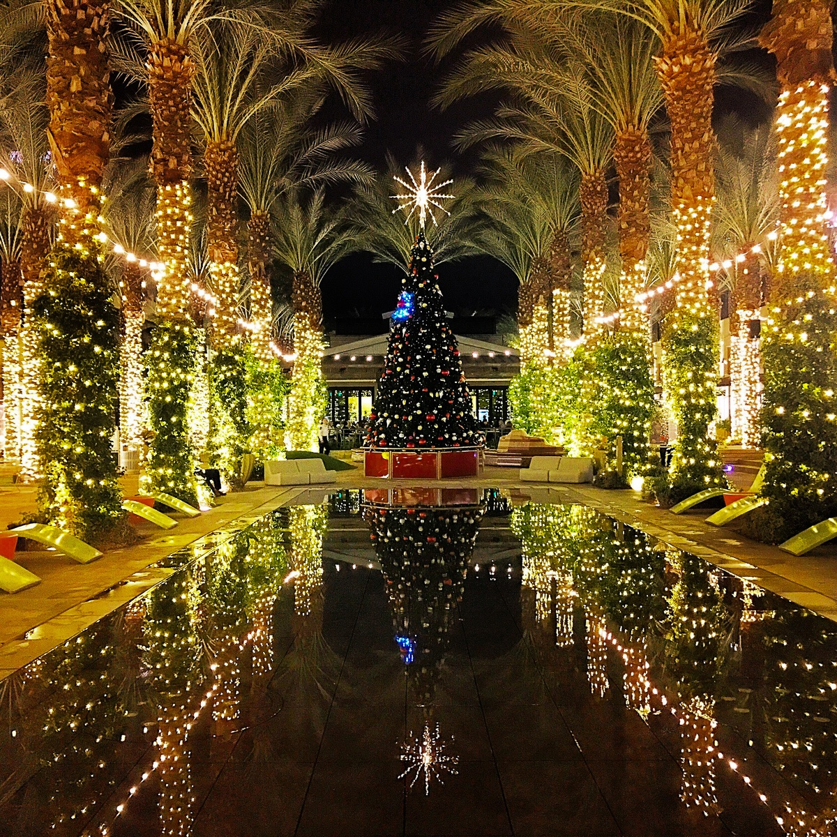 Christmas tree and holiday lights at Scottsdale Quarter