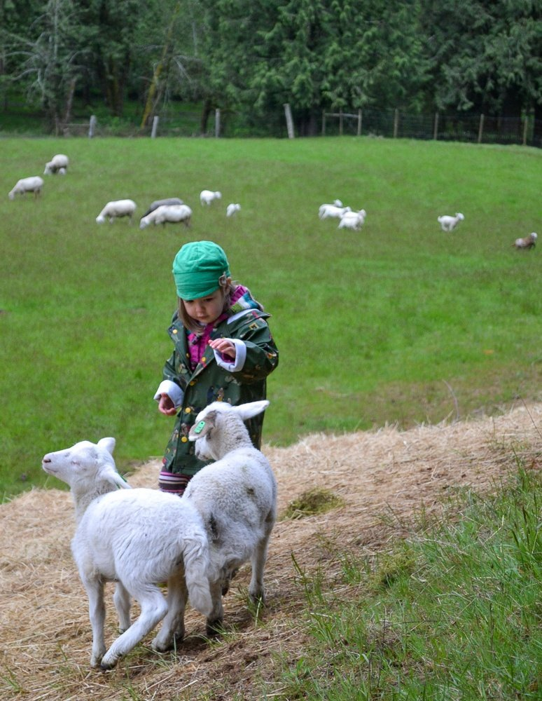 Outdoorsy vacations like farm stays help kids connect with nature