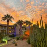 Sunset and Christmas lights in Scottsdale, AZ