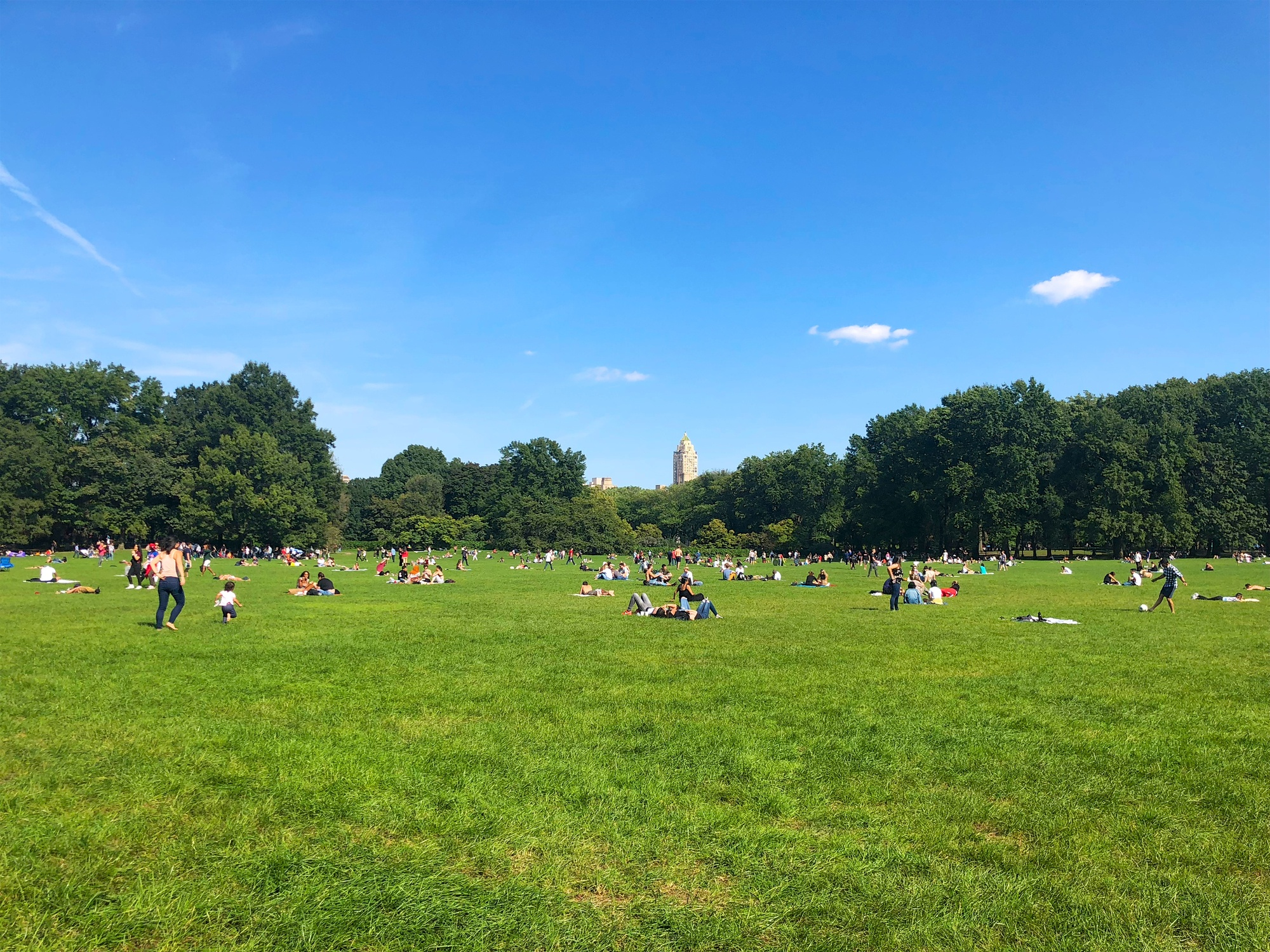 Picnickers on Sheep Meadow in Central Park