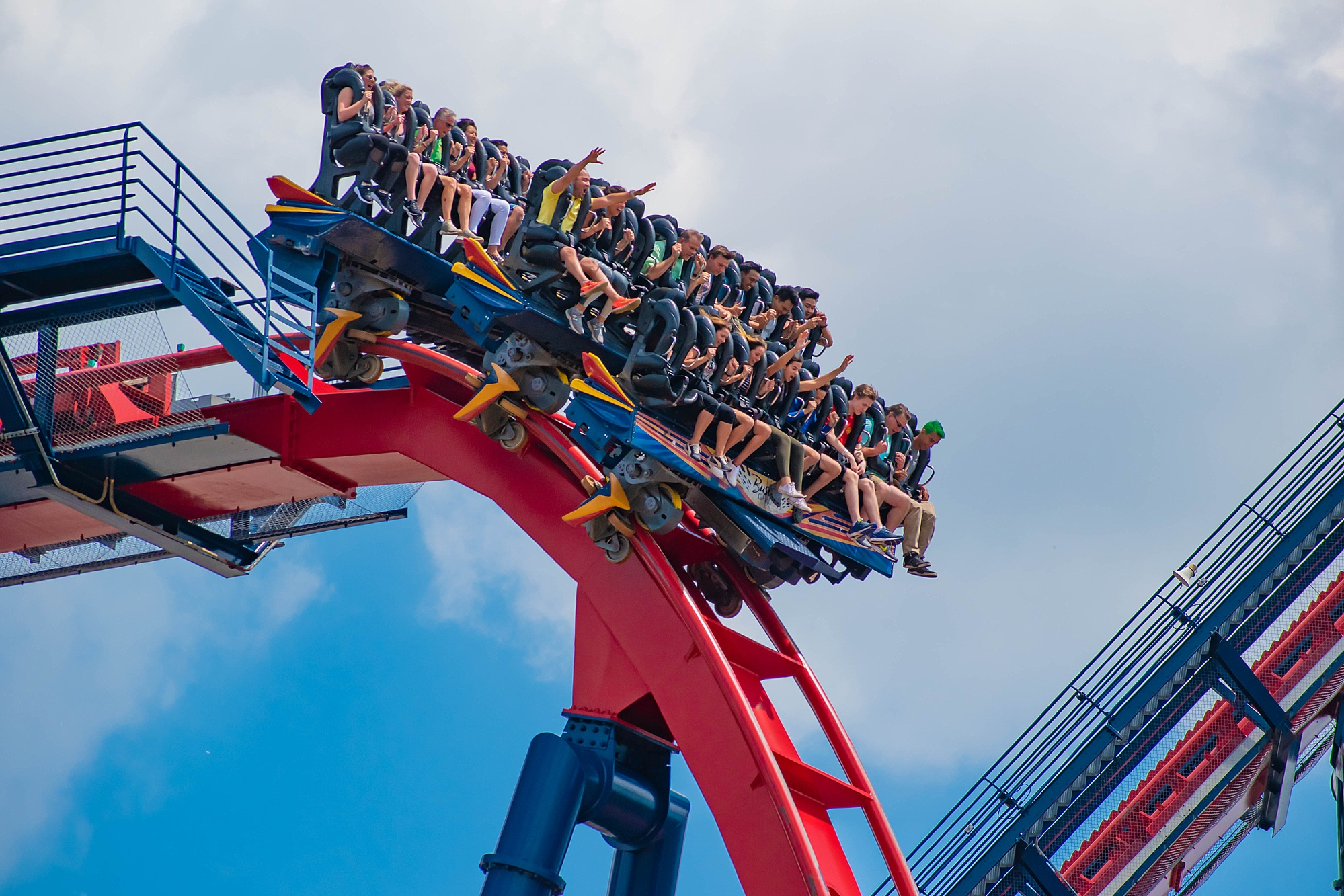 Sheikra roller coaster at Busch Gardens
