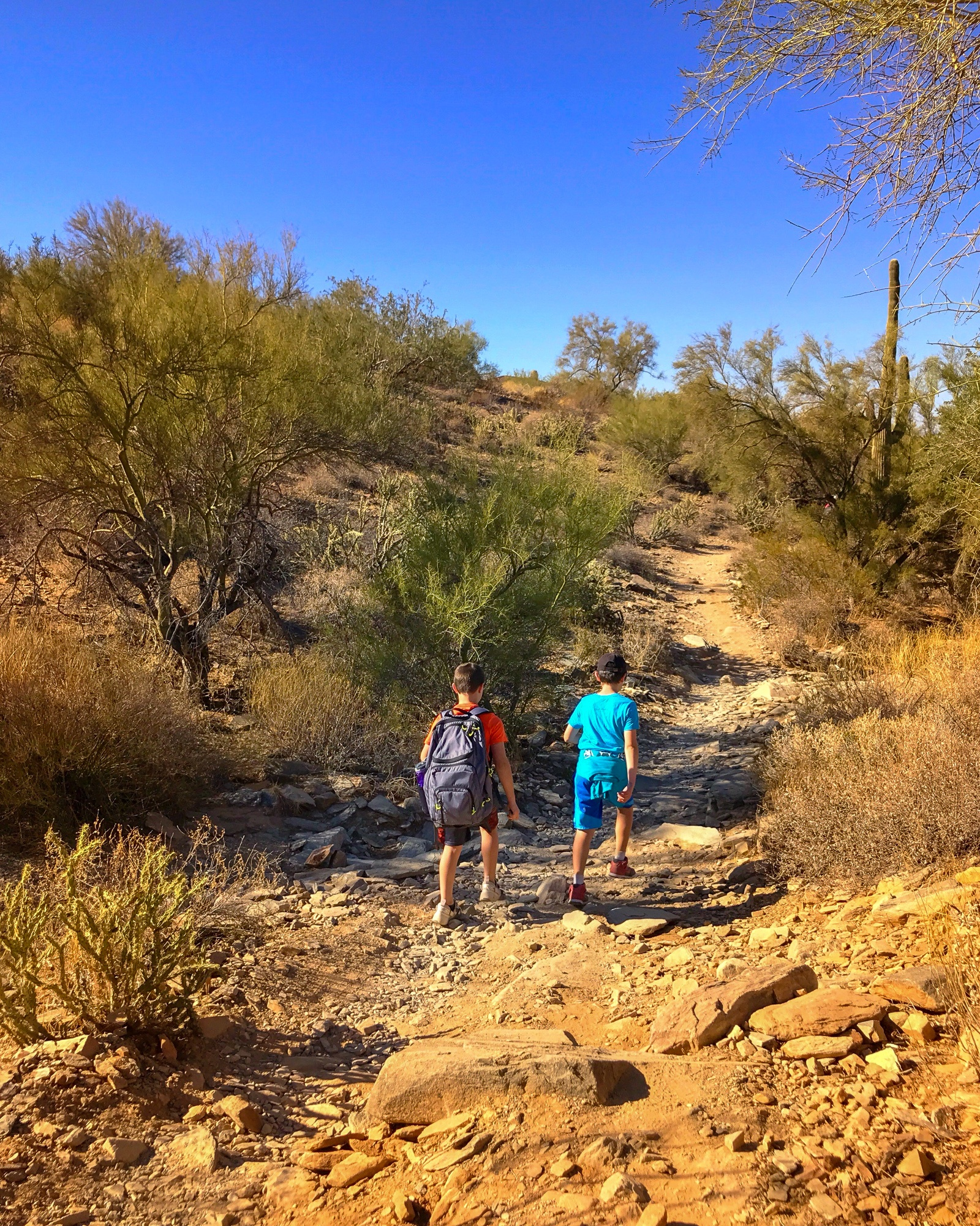 My son and one of his classmates on Lost Dog Wash Trail outdoors in Scottsdale