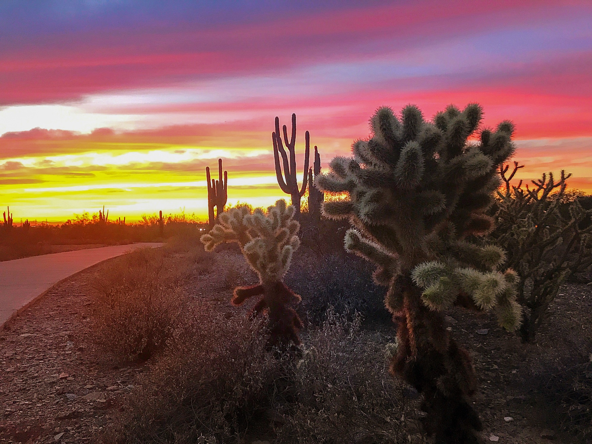 These Scottsdale outdoor activities will wow you!