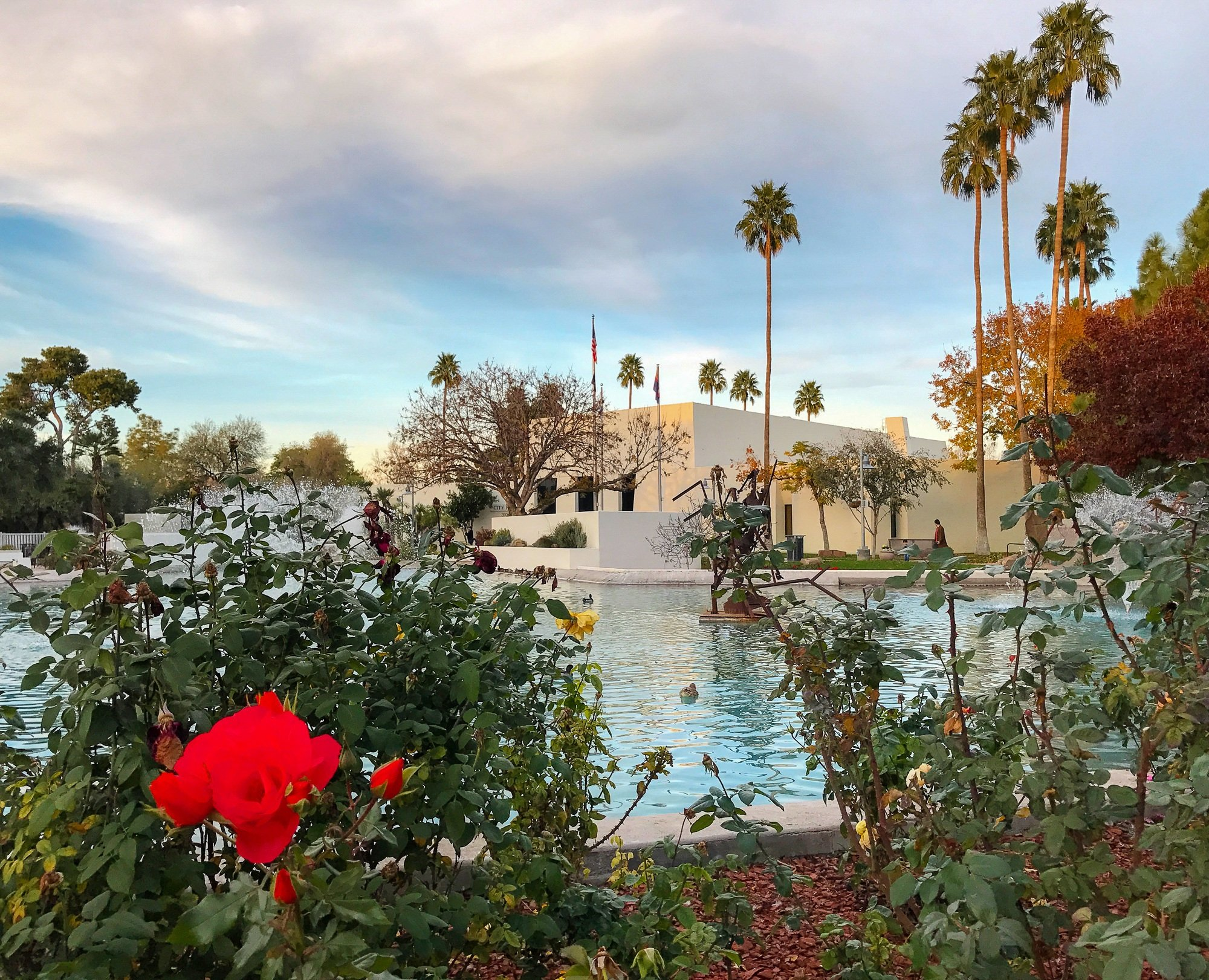 Scottsdale Civic Center Plaza fountain and flowers