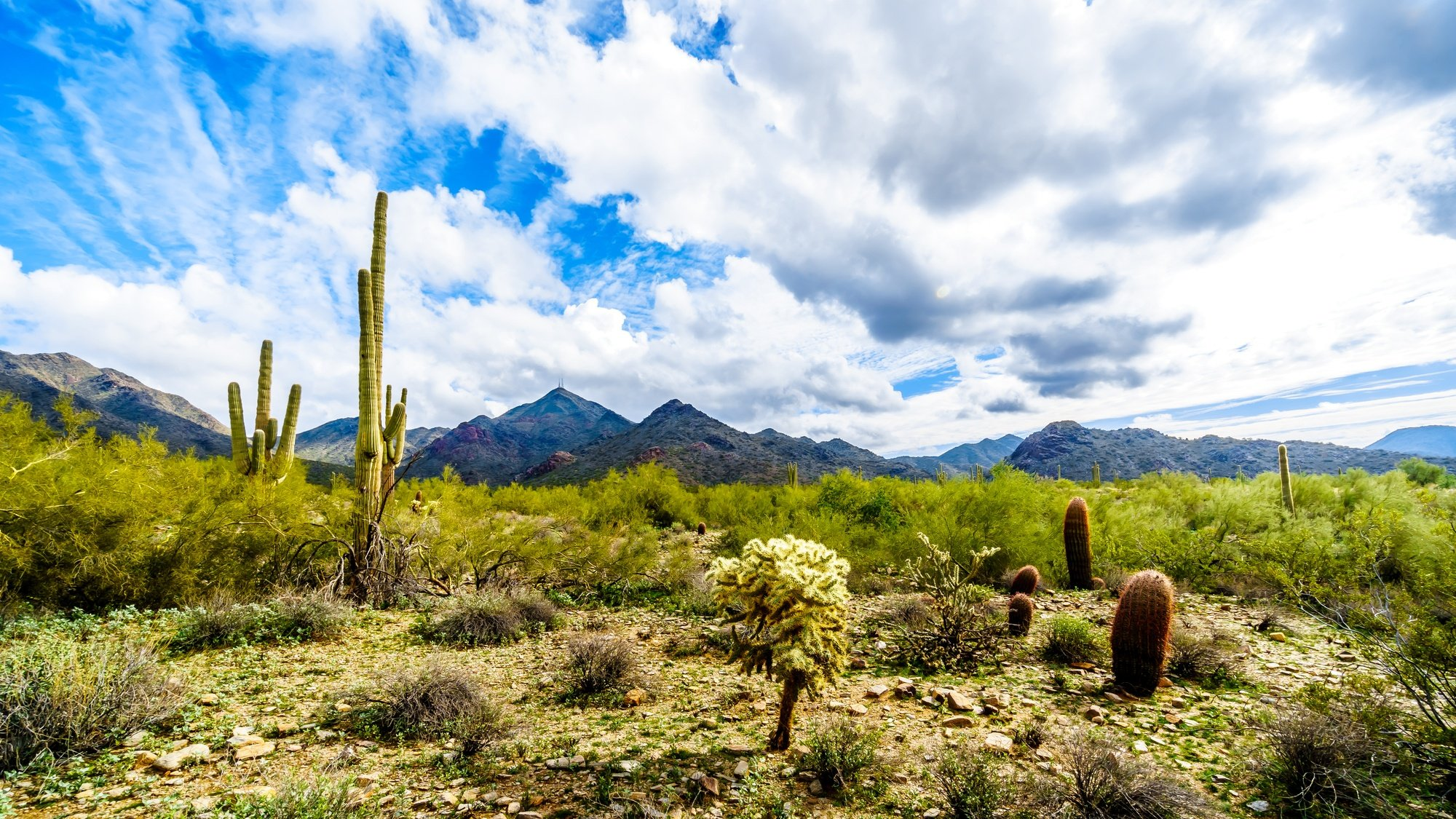 Scottsdale outdoor activities abound in the MacDowell Mountain Preserve