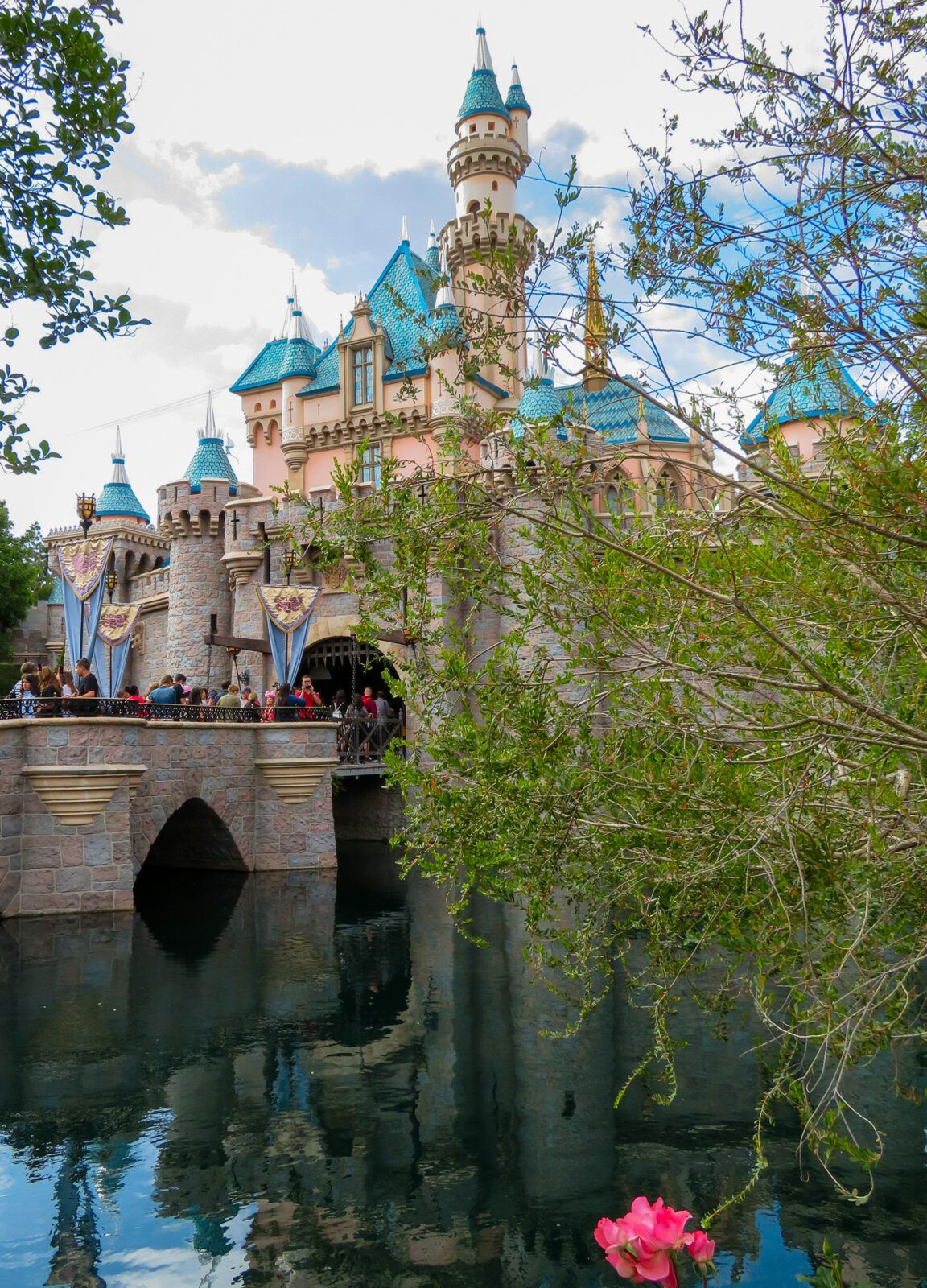 Disneyland with kids