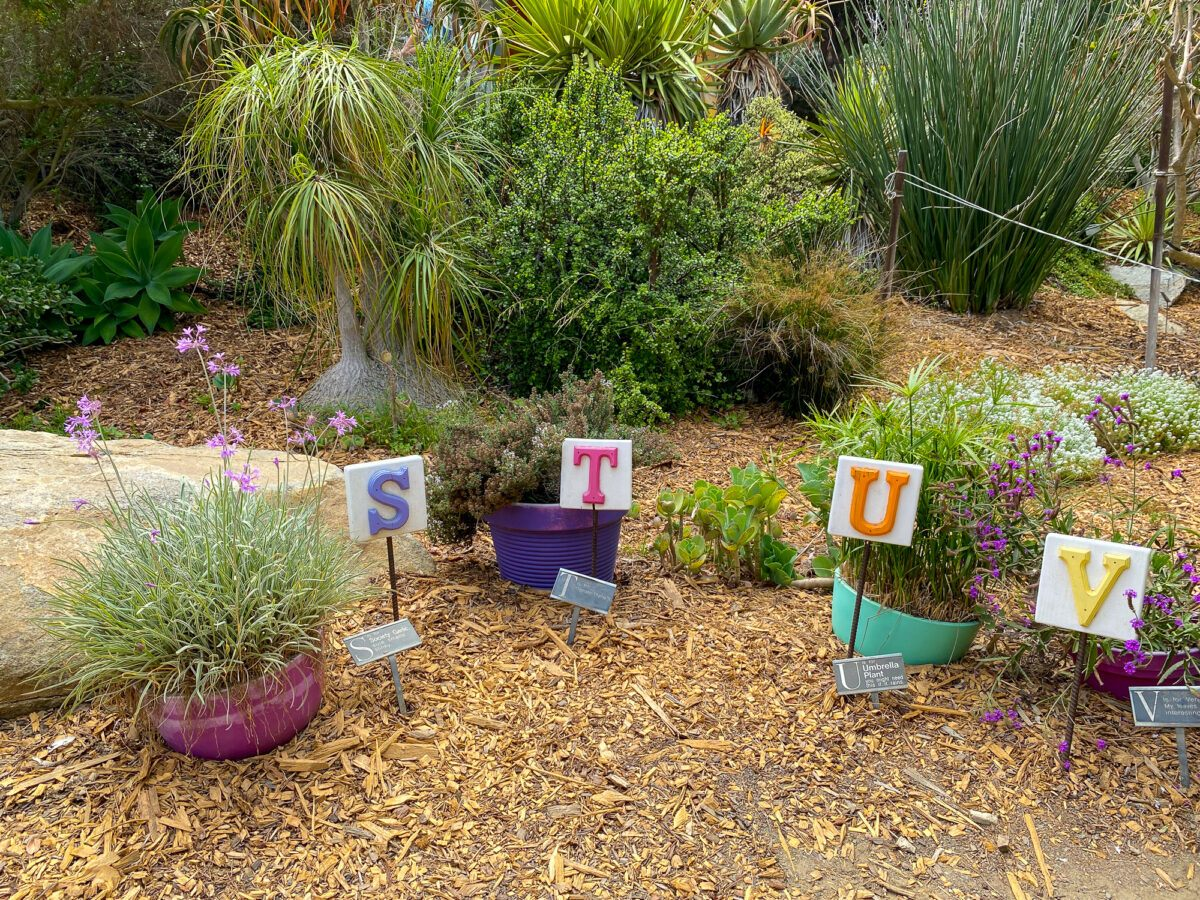 Spell and Smell Garden in Hamilton Children's Garden