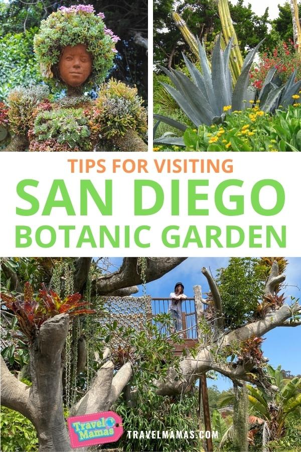 San Diego Botanic Garden Tips