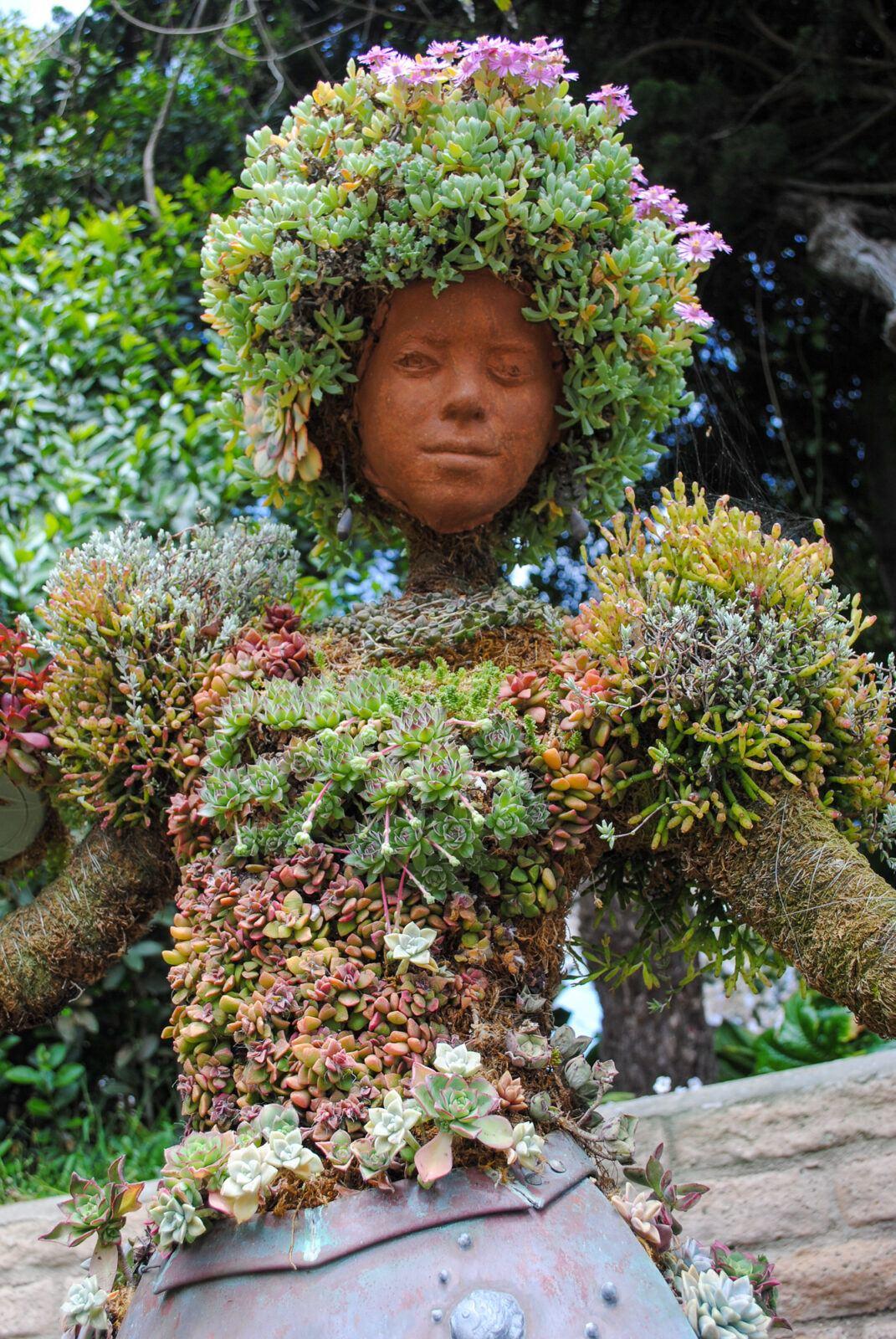 Flamenco topiary in San Diego Botanic Garden's Mexican Garden