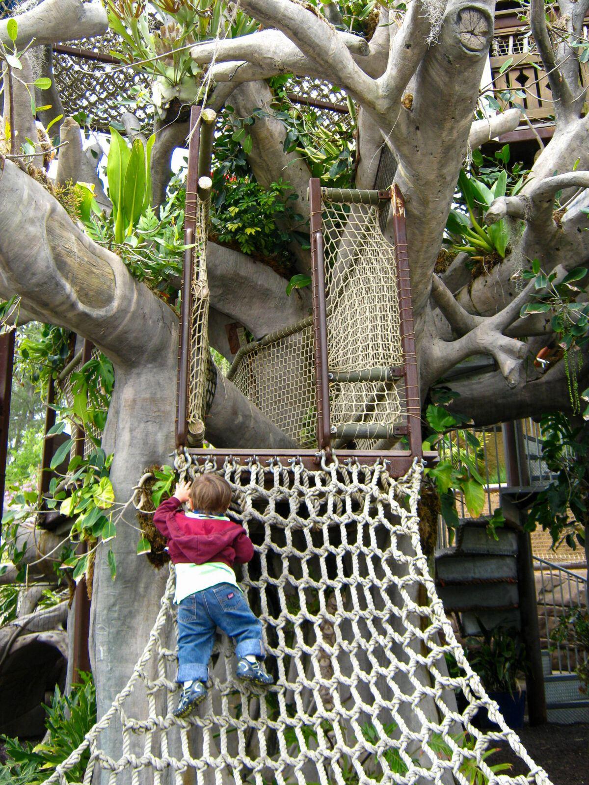 Toddler climbing Toni's Treehouse net ladder at San Diego Botanic Garden