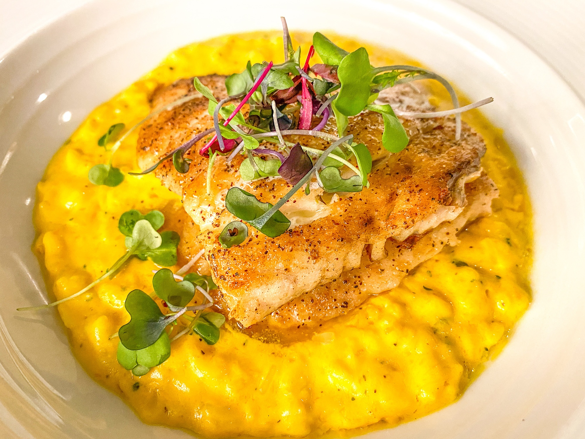 Fish of the Day served with butternut squash risotto at Sixty-One Prime Restaurant in Duck Key, Florida