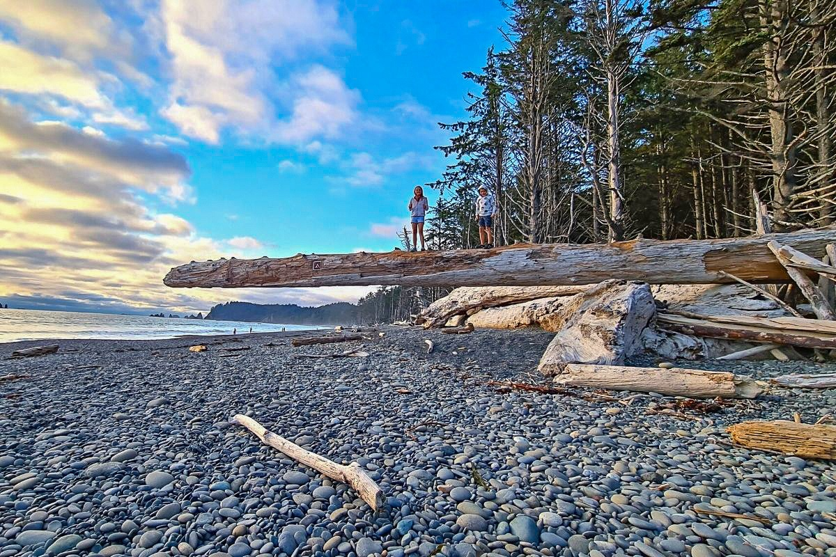 Olympic National Park with kids
