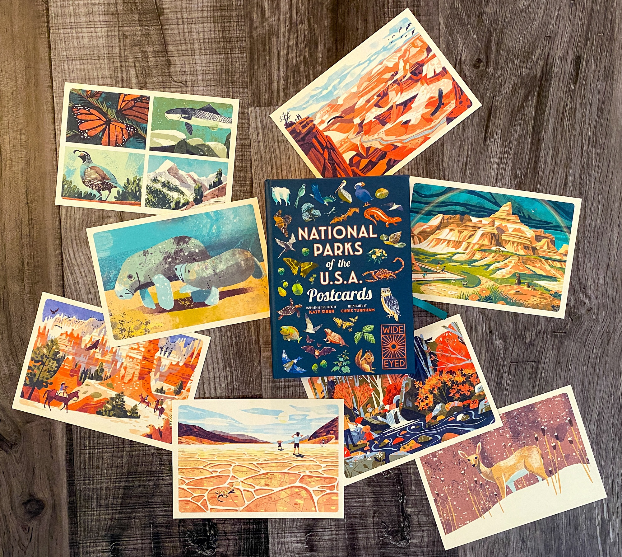 Explore the best national parks for kids with National Parks of the USA Postcards by Quarto Kids